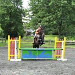 Sandy  Price Jump