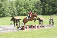 Becca competing one of her young OTTBs