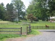 Front pasture