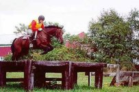 Becca and her former Advanced horse, Dollar Spot