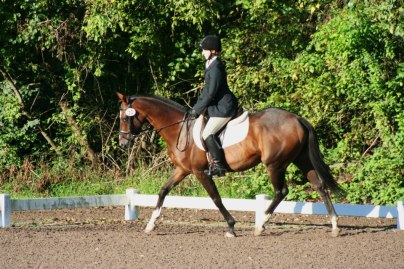 Student Taylor and her mare, Sociology